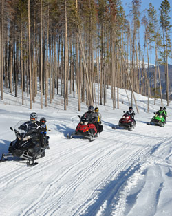 Snowmobilers riding their sleds along a groomed path
